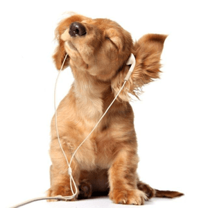 Radio best_of_90s