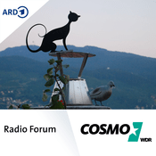 Podcast COSMO - Radio Forum Beitrag