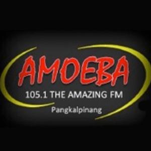 Radio Amoeba 105.1 FM